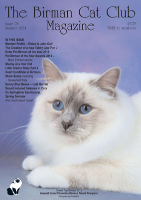 Birman Cat Club Rescue